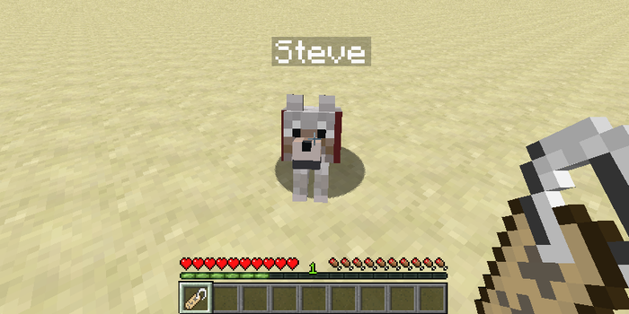 How To Use A Name Tag Minecraft